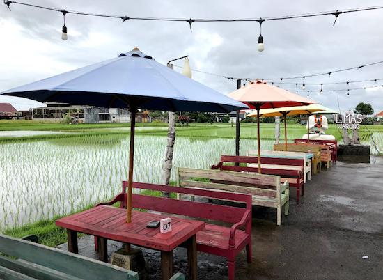 rice field warung limas bali