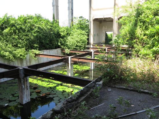abandoned building taman festival bali