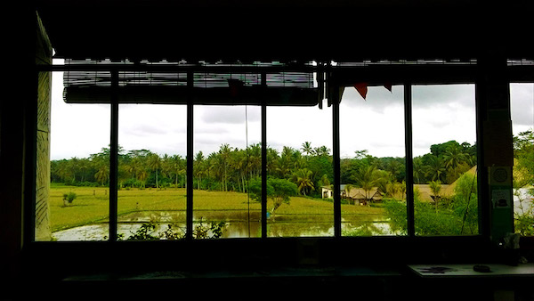 bali jepun tea room rice field view from above