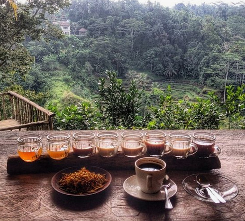enjoying bali coffee in nature